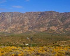 A typical Klein Karoo (Little Karoo) landscape near Barrydale on Route 62.