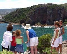 At the Featherbed Nature Reserve in Knysna visitors get to hike from the top of the Western Head down to, and along, the beautiful Knysna Estuary.