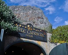 Haute Cabriere's popular cellar near Franschhoek is built into the mountainside.