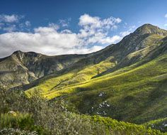 The view of the surrounding mountains from a viewpoint on the Outeniqua Pass outside George, linking it to the Klein Karoo in the interior.