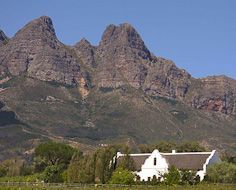 A typical wine farm or estate in the Wellington region of South Africa's Western Cape province. The buildings in the picture are in the Cape-Dutch architectural style.