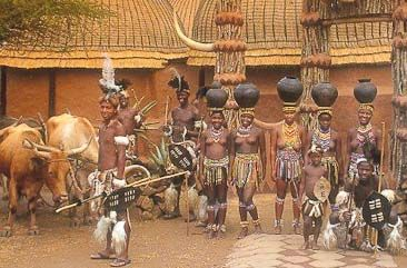 Shakaland Zulu Cultural Experience Tour
