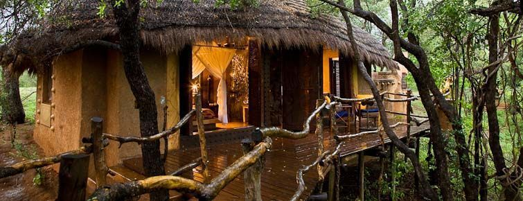 Makalali Private Game Reserve - guest chalet
