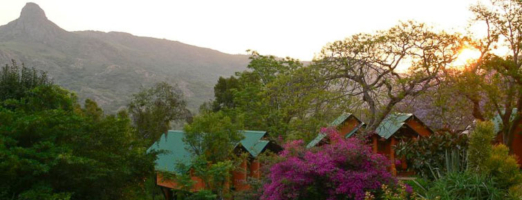 Mantenga Lodge Chalets