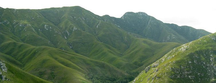 The Outeniqua Mountains