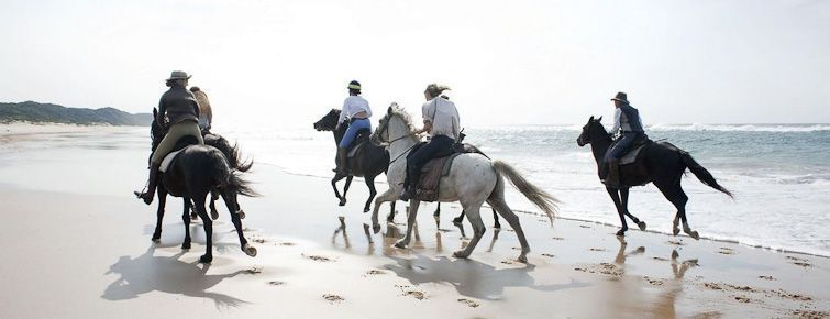 St. Lucia beach horse-riding